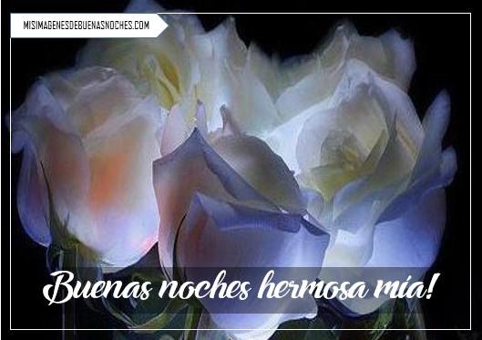 imágenes de buenas noches con rosas blancas