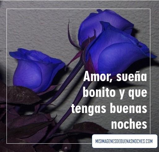 imagen de rosas azules de buenas noches