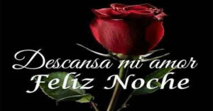 Feliz noche mi amor buenas noches dulces sueños