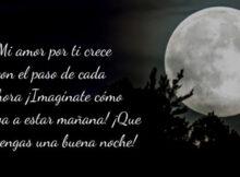 Hasta mañana mi amor buenas noches