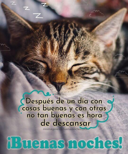 buenas noches descansar