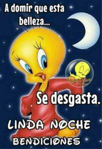 buenas noches descansa linda noche